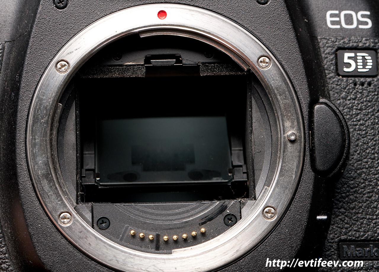 выпекается точки автофокуса в зеркальном фотоаппарате общем